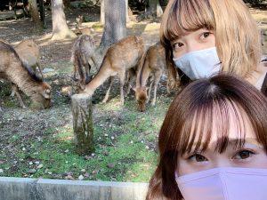 密じゃないお出かけ先へ!奈良公園