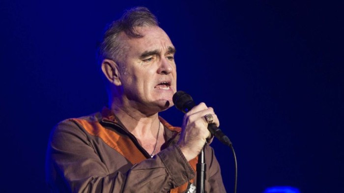 "morrissey ""blue dreamers eyes"""