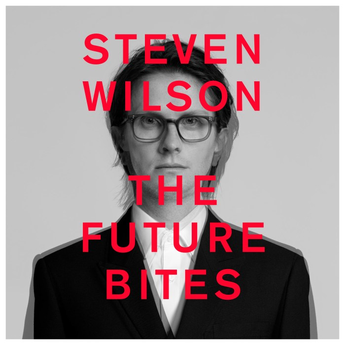 "Steven Wilson copertina ""The Future Bites"""