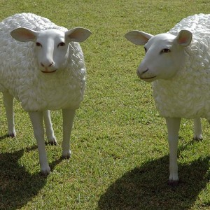 Sheep Sculpture Photo By Wouter Hagens