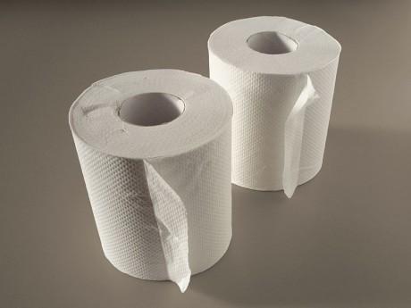 Toilet Paper - Public Domain