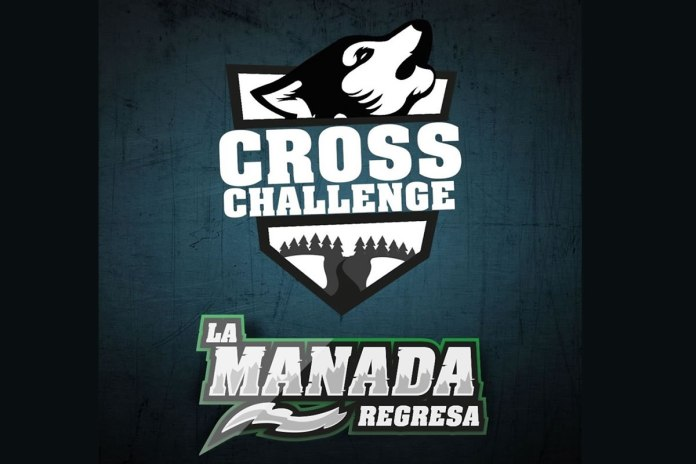 Cross Challenge 2020