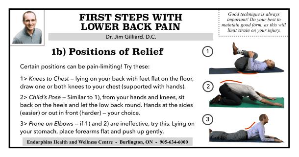 Lower Back Pain 1B
