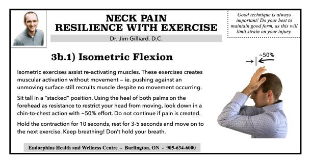 3B1 - Isometric Flexion