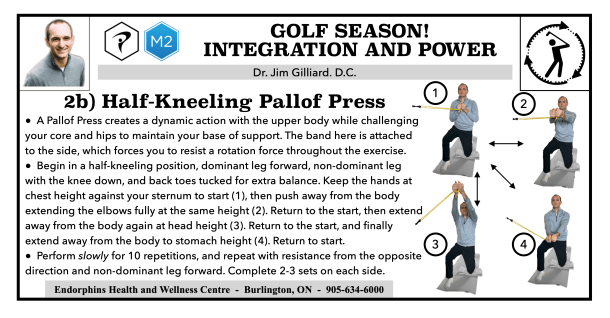 Golf Exercise Pallof