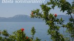 Hav, berg och blommor