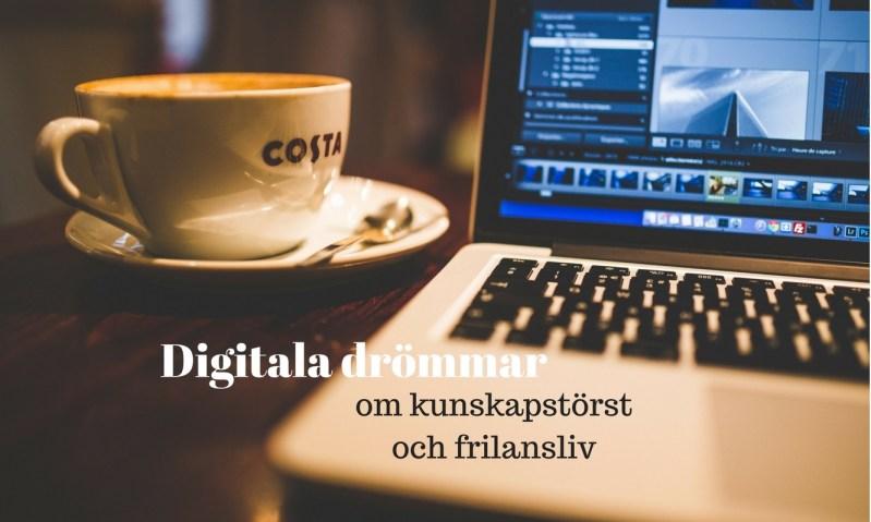 Digital kunskap - EnEmilia resonerar