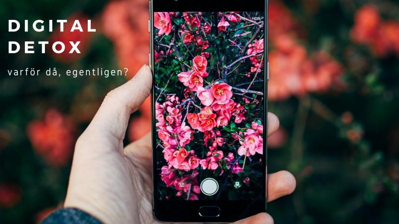 digital detox mobil