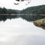 köpstopp2019 - bild på lugn sjö och skog