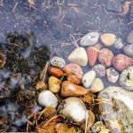 bild på stenar