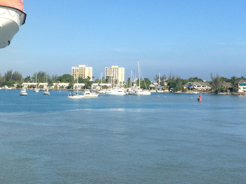 Island Naturals Cayman