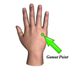Tap the gamut point to stop your food sensitivities