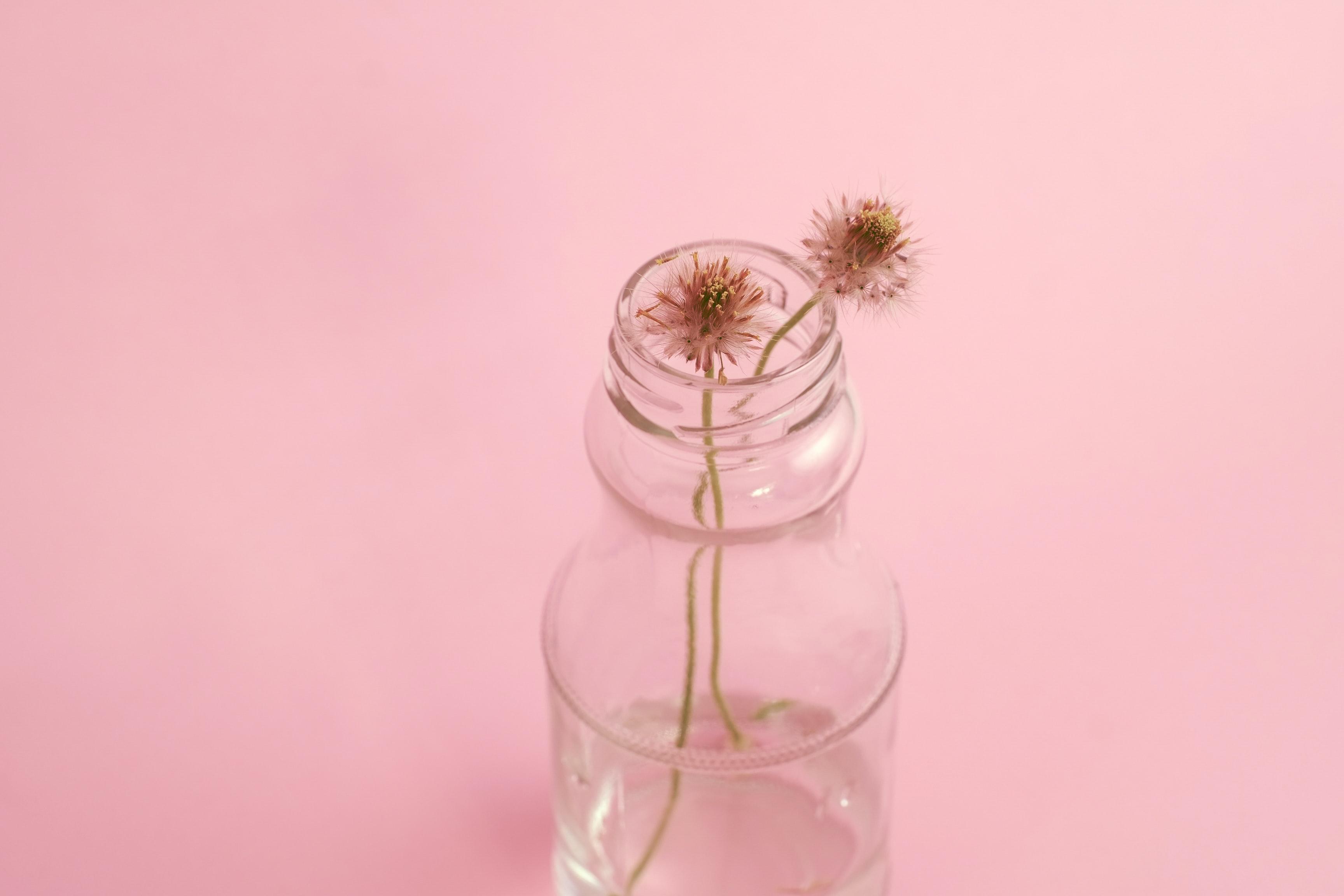 Foto bloemen in vaas