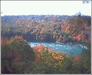 Niagara River: In the middle of the forest, there is God