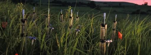 Klimatska kriza mogla bi otežati upijanje vode u tlo