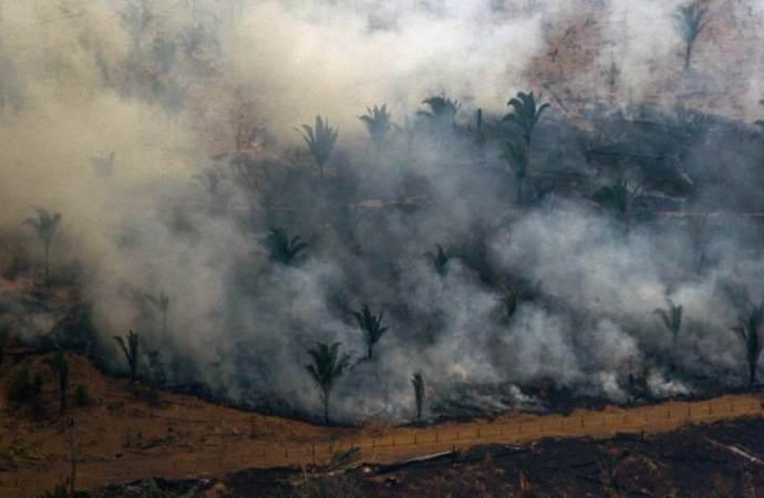 Šest zemalja južne Amerike brani Amazoniju na summitu
