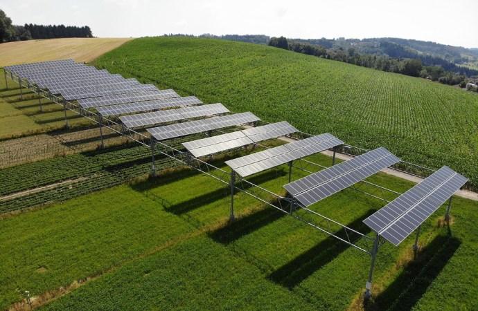 Solarna energija i poljoprivreda idu ruku pod ruku