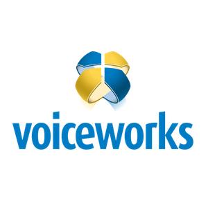 voiceworks holacracy organization