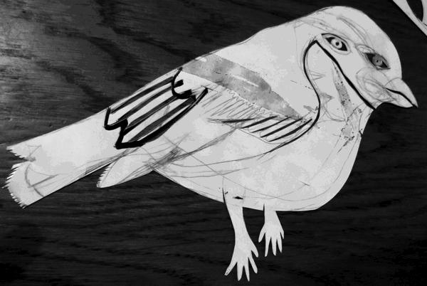 oiseauNBentier