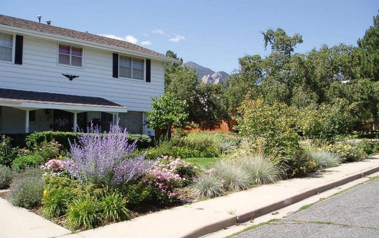 landscaping water conservation
