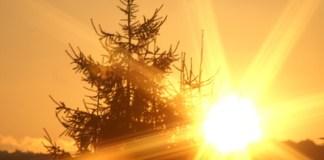 solarstrom-guenstigste-stromquelle