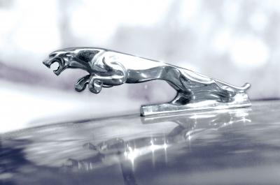 jaguar-elektrofahrzeug-suv
