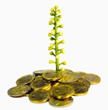 gruene-geldanlagen
