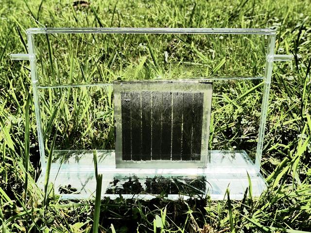 kuenstliche-photosynthese-anwendung