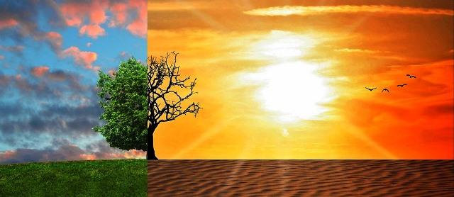 Globale Erwärmung Fakten