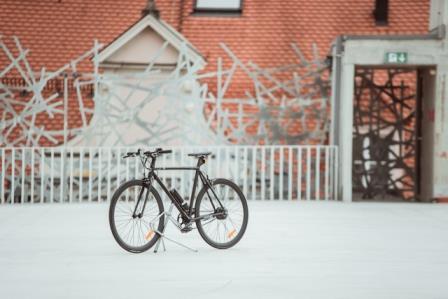 elektro-bike