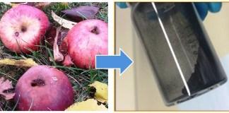 batterieforschung-organische-elektroden