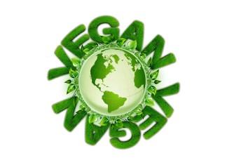 veganer-strom