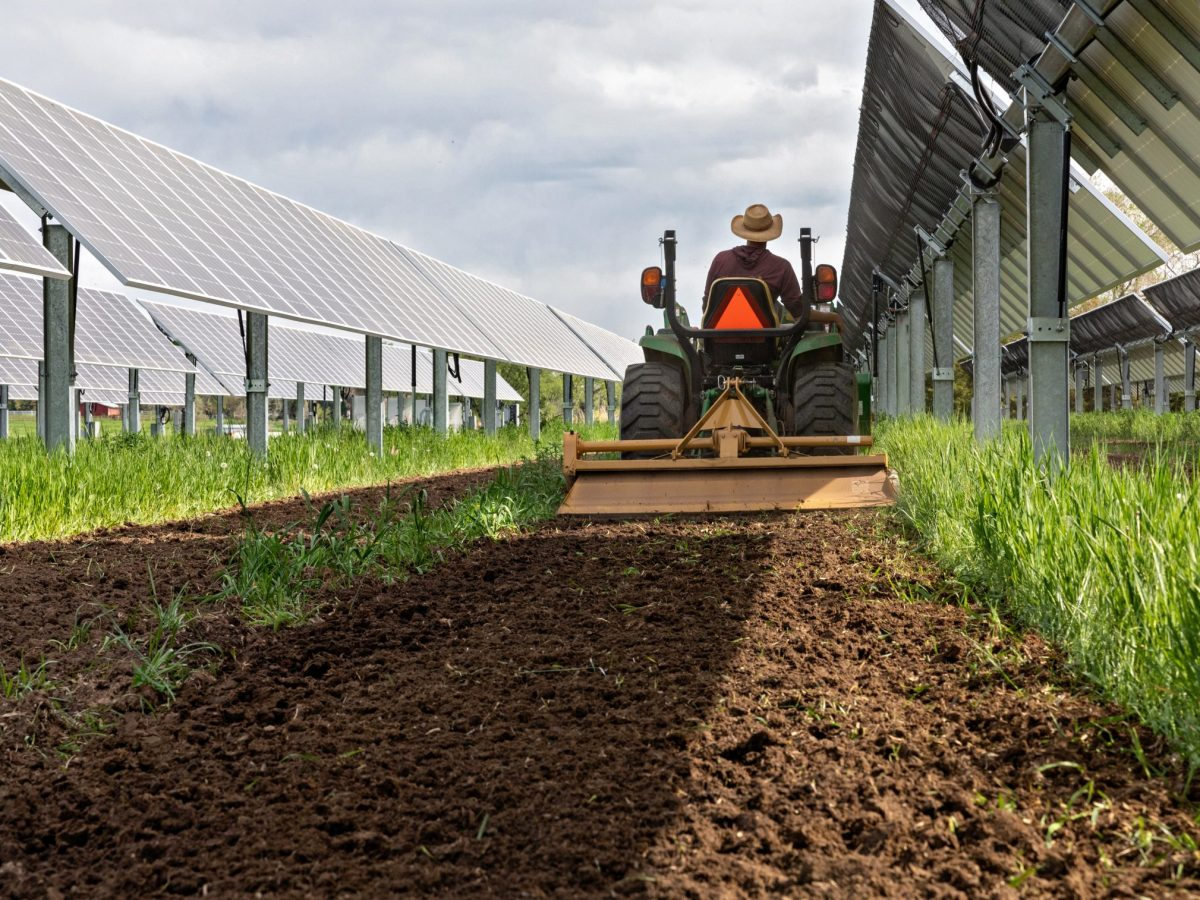 A community solar farm and agrivoltaic research project in Colorado.