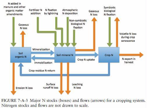 nitrogen-flows-in-agriculture