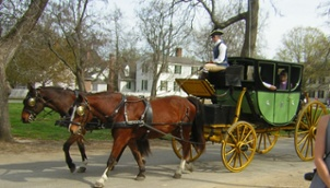no carts before horses image of horse and carriage