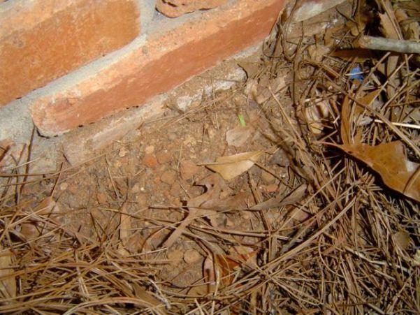 crawl space encapsulation moisture problem mystery gutter downspout 6