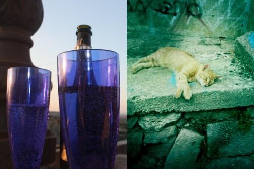 puglia_glass_katt_martine