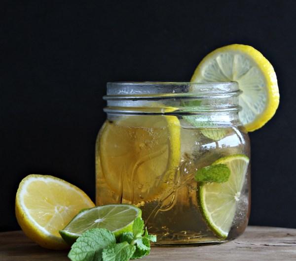 Port tonic aperitiff i et glass med sitronskiver og mynteblader
