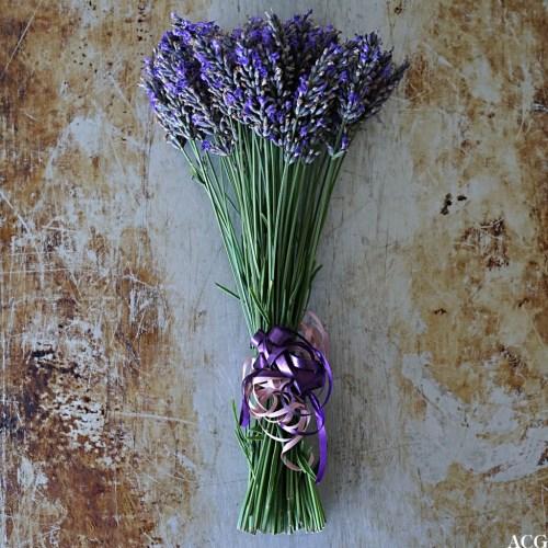Lavendelbukett til lavendelsirup
