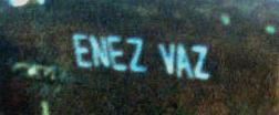 enez vaz san rossore 1986-3