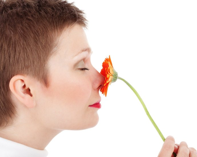 Les fleurs nous entourent, on les regarde peut-être chaque jour et on s'émerveille peut-être chaque jour devant leurs couleurs mais prenez-vous le temps de vous arrêter pour les sentir ?
