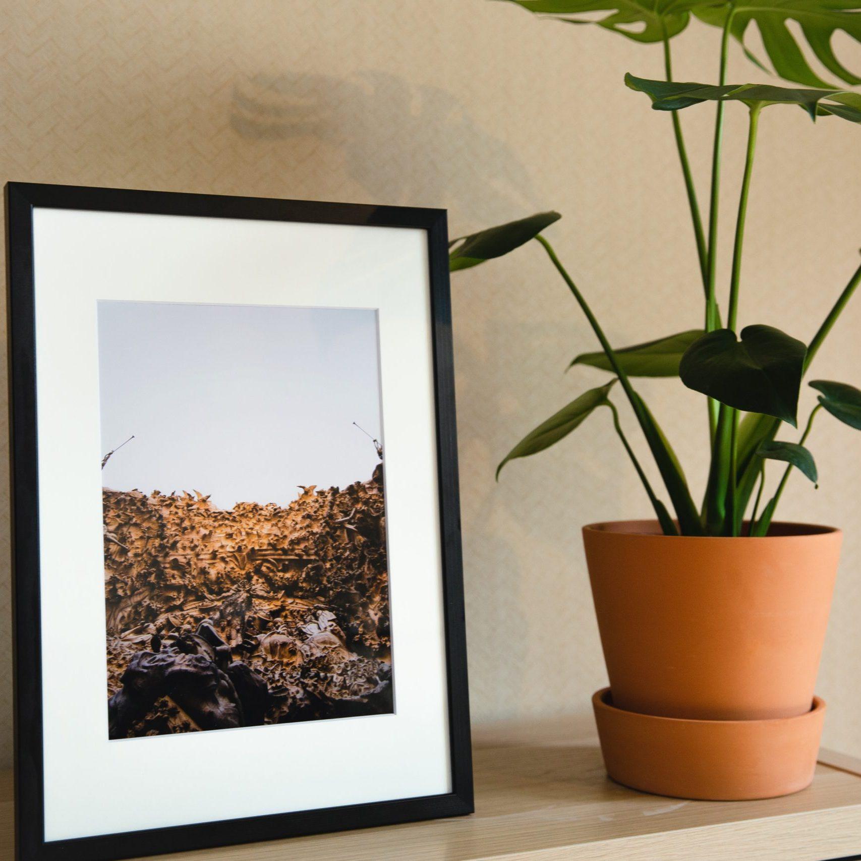 Installez des photos ou des peintures sur vos murs pour vous inspirer et méditer