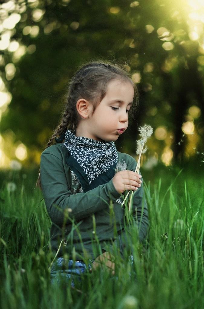 Souffle, souffle, souffle, petit enfant ! Va semer les graines du pissenlit !