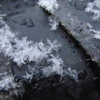 Stage du flocon de neige: informations pratiques et inscriptions
