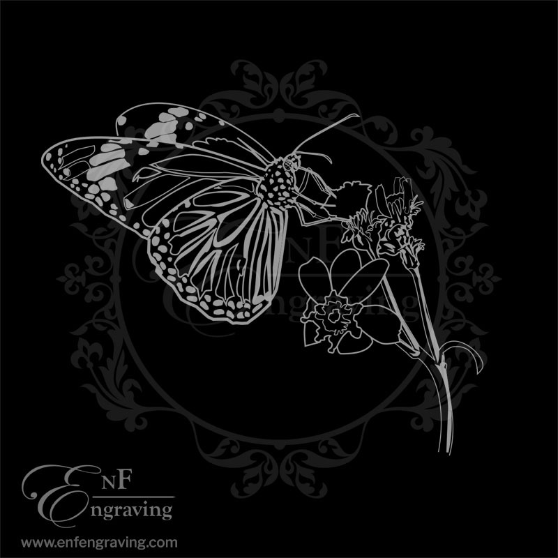 Butterfly and Plant Engraving Artwork