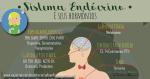 Sistema Endócrino e seus Hormônios