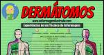 Os Dermátomos