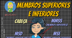 Membros Superiores e Inferiores