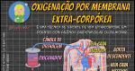 Oxigenação por membrana Extra-Corpórea (ECMO)