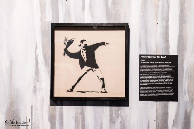 The art of banksy Anvers flower thrower The Art of Banksy, le street artiste sexpose à Anvers